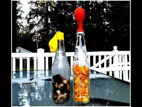 How To Inflate Balloons With Composting Bottles Banana Orange Ls
