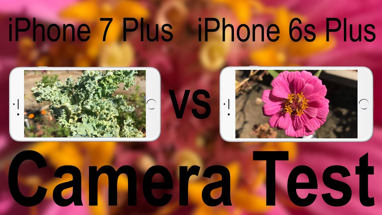 Camera iphone 7 vs 6s