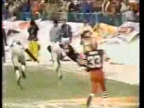 "Brian Sipe ""red right 88"" interception (1980 playoffs)"