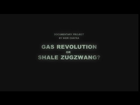 Gas Revolution or Shale Zugzwang?