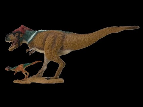 Estos son mis Tyrannosaurus emplumados (CollectA) #010 y #011 — #AbrilVideosMil
