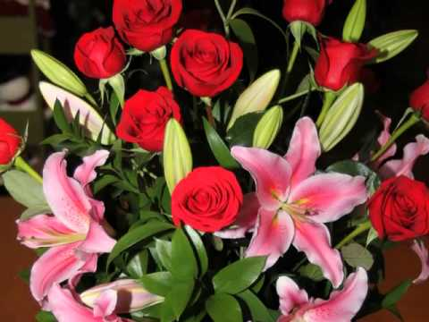 Chalifour's Flowers Gift & Gourmet - Florist Manchester, NH