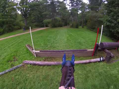 Morgan Horse Kennebec Rugby GOPRO Training Cross Country UNH