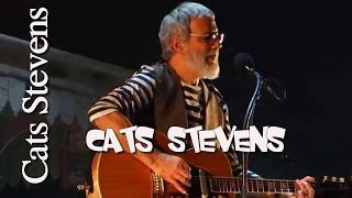 Cat stevens Greatest Hits Full Album Live 2017 - Best Of Cat Stevens Songs