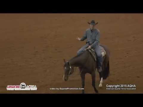 Western Pleasure Ride the Rail Clinic 2015