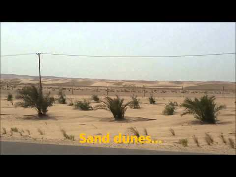 Drive to Madinat Zayed in the Western Region of Abu Dhabi
