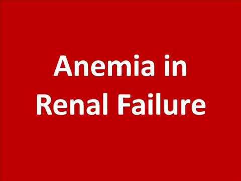 Anemia of Chronic Renal Failure | Causes