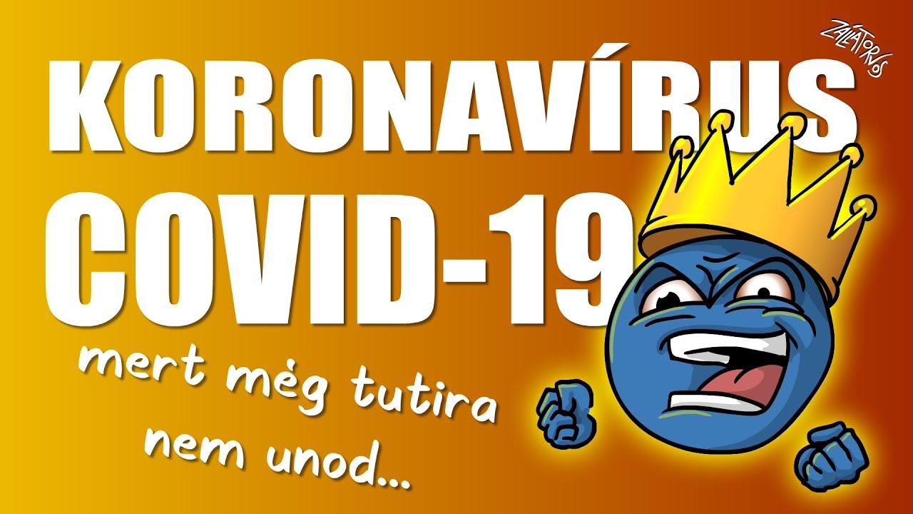 Koronavírus (COVID-19) összefoglaló 2020.02.21. (FIGYELEM! EGYES RÉSZEI MÁR ELAVULTAK!)