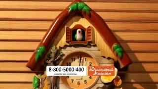 Часы с кукушкой «Поющий Сад». domatv.ru