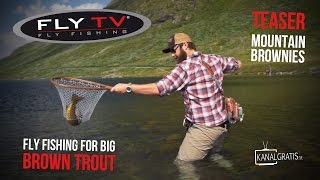 FLY TV - Mountain Brownies - Teaser (Fly Fishing for Big Brown Trout)