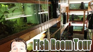 Fish Room Tour 1600 Gallons! Tons of Plecos, Goodieds & African Cichlids