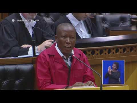 Malema gets personal in Parliament over 'Dudu Myeni Zuma'