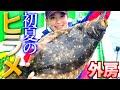 【ヒラメ釣り】初夏の大型を狙え!! 外房ヒラメ 大盛丸 千葉・外川沖