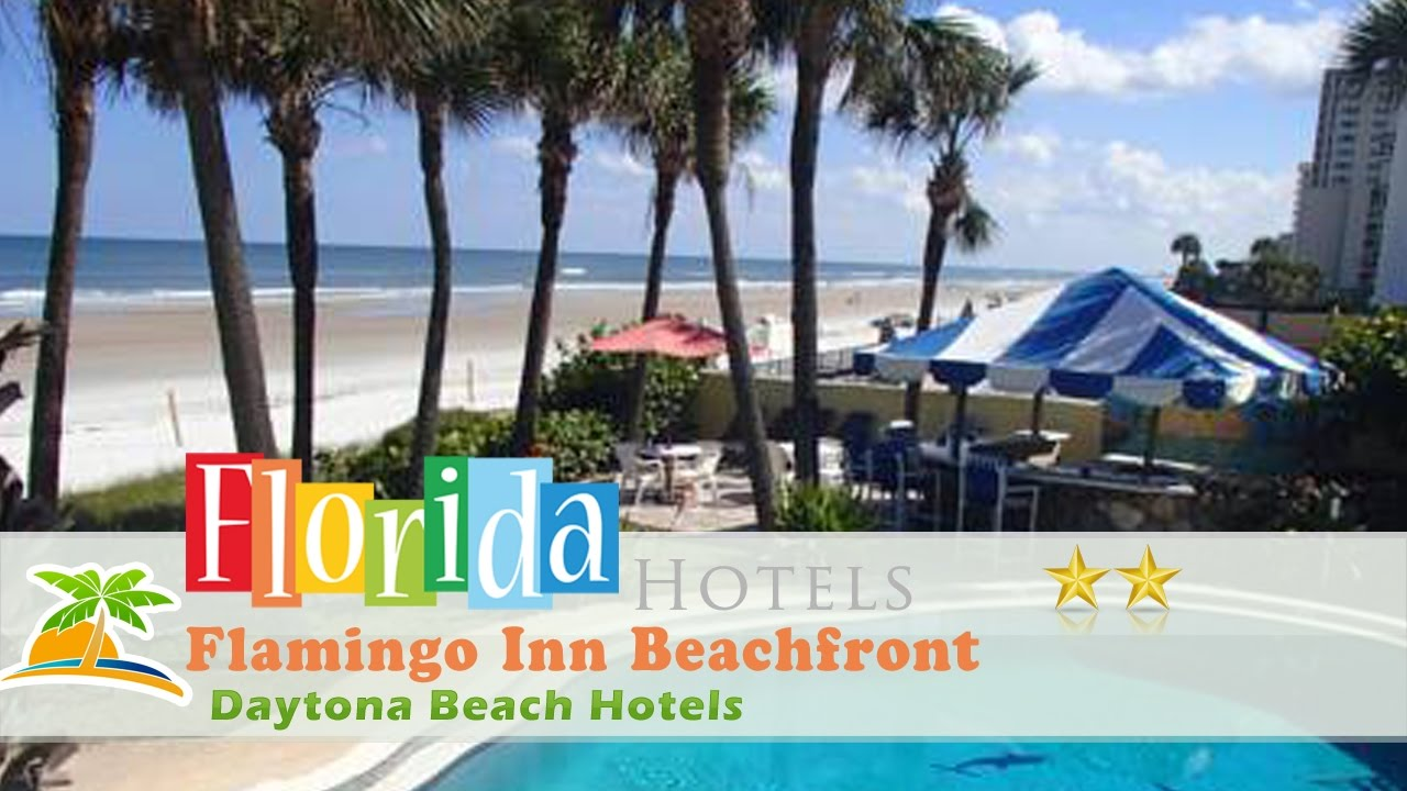 Flamingo Inn Beachfront Daytona Beach Hotels Florida