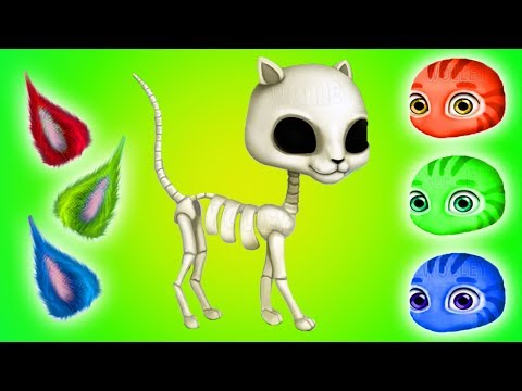 Build Little Kitten Play Care and Learn Animation Education Kids Games