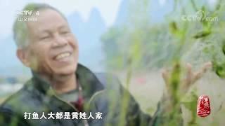 《记住乡愁》 20200125 春节节目 山水永续 年年有余  CCTV中文国际