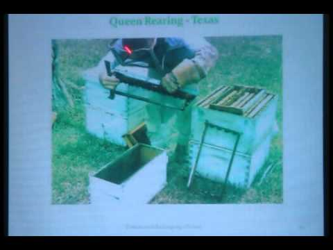 Story of a Commercial Beekeeper by Jimmy Oakley