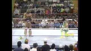 Ultimate Warrior vs. Randy Savage drama, WWF 1992