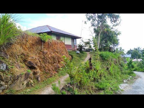 indonesia Village Life💙 Rural Life of west sumatra (indonesia) Village Life style of indonesia