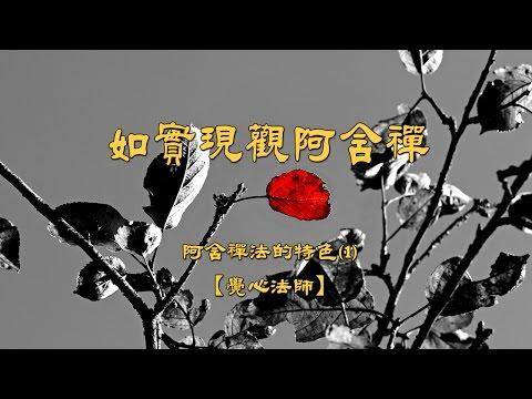 阿含禪法的特色--01.如實現觀阿含禪【覺心法師】
