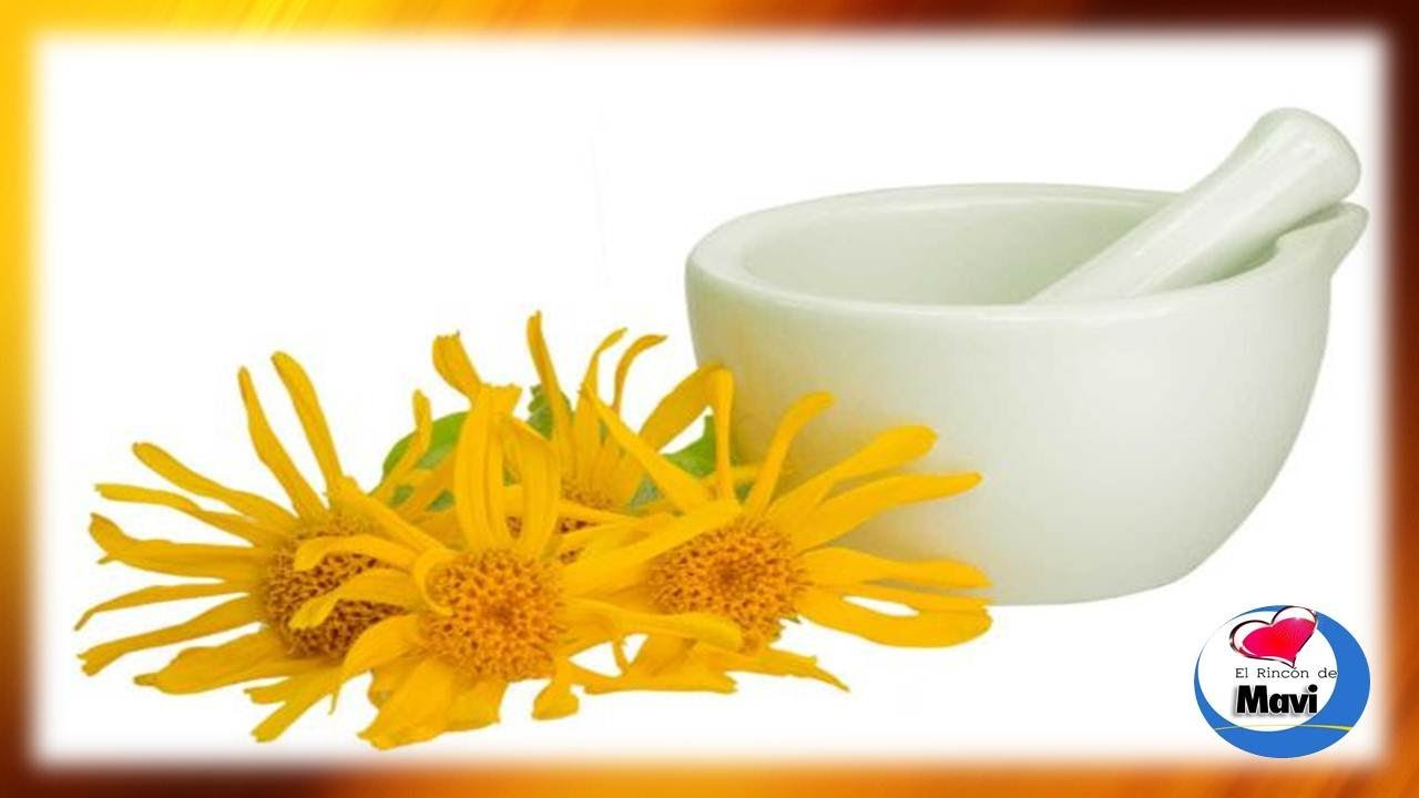 Para que sirve el arnica propiedades y beneficios del for Planta decorativa con propiedades medicinales