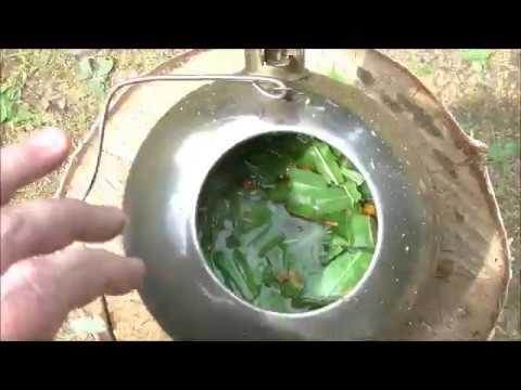 Готовим с ЧВВ.  Завариваем чай из листьев Иван Чая и плодов рябины. 2019 год