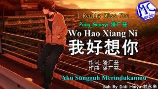 潘广益 - 我好想你 (KTV) karaoke