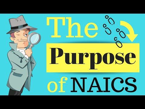 The Purpose of NAICS   Class Codes
