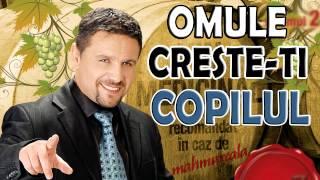 Nicu Paleru - Omule creste-ti copilul (muzica de petrecere 2015)