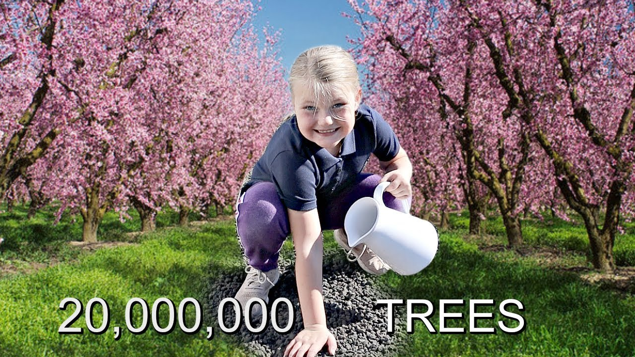 HELPING to Plant 20 MILLION TREES! #TeamTrees