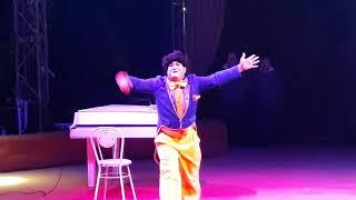 Цирк арена-ягуар 2018