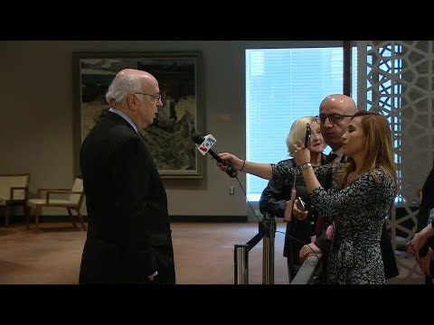 Dominican Republic on Middle East - Security Council Media Stakeout (19 February 2020)