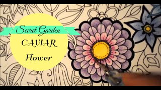 Secret Garden Coloring Book | Flowers. Part 2 CAVIAR | Jardim Secreto