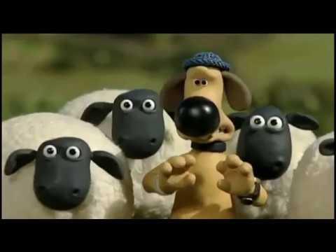 Shaun The Sheep دقيقة 40 فيلم كرتون الخروف الشهير شون ذا شيب Youtube 1 Youtube