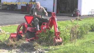 Kubota BX tree transplanter