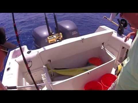 Trolling For Mahi Mahi Offshore, Florida Cape Canaveral, Blue Water Fishing