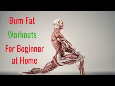 burn-fat-workout-for-beginner-–-beginners'-workout-at-home