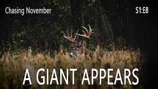 Chasing November S1E8 | A Giant Appears