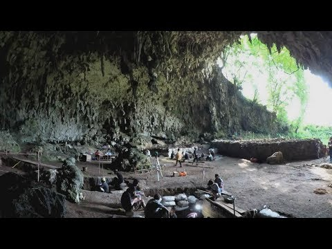 Indonesia fossils shed further light on human evolution