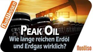 """""""Peak Oil"""" - Wie lange reichen Erdöl und Erdgas wirklich? - Prof. Werner Kirstein"""