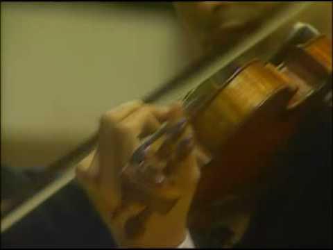 "Mario Hossen - Paganini  ""I Palpiti"" - II"