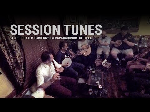 Session Tunes - The Sally Gardens/Silver Spear/Humors of Tulla