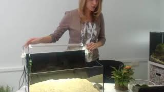 Паллюдариум для красноухих черепах