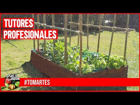 HACEMOS TUTORES PROFESIONALES PARA TOMATES - MARTES DE TOMATES Ep. 10