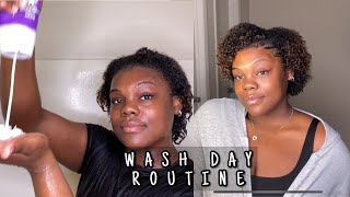 WASH DAY ROUTINE!! | 3c/4a dry & frizzy hair | Moisturized & Defined