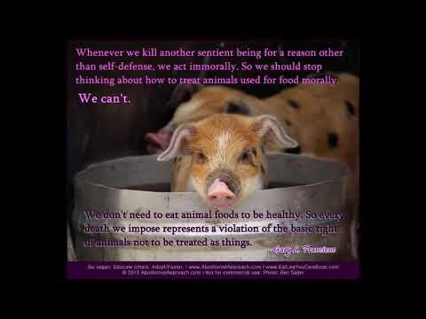 Animal Rights Quotes - Prof. Gary L. Francione (No. 1)