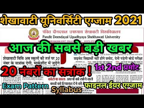 Shekhawati University Exam 2021 Big Update | Pdusu Exam Pattern | Pdusu Exam Syllabus UG PG BEd Exam