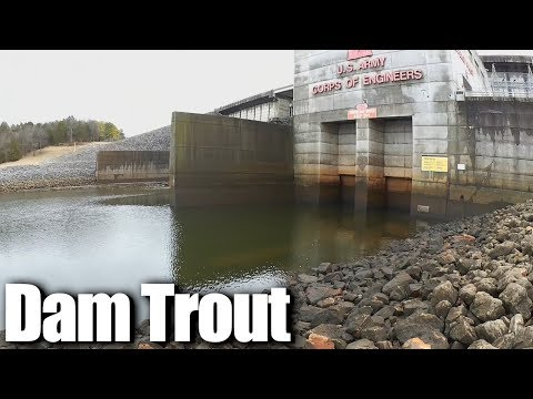 Trout Fishing At J Percy Priest Dam - Winter Trout Fishing Part 2