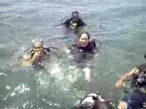 ticao island, philippines, diving for mantarays and sharks