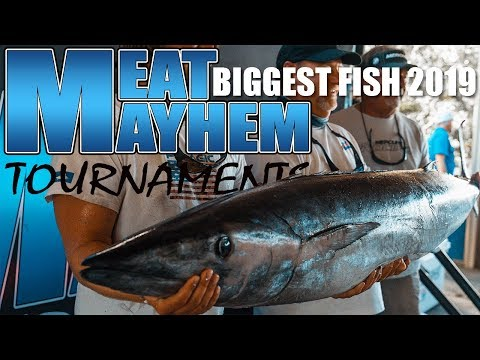 2019 Meat Mayhem Tournament Series - Year Of The Big Fish! Kingfish, Wahoo, Dolphin